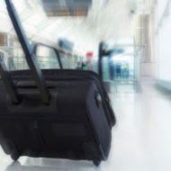 Airone bagaglio a mano e borsa
